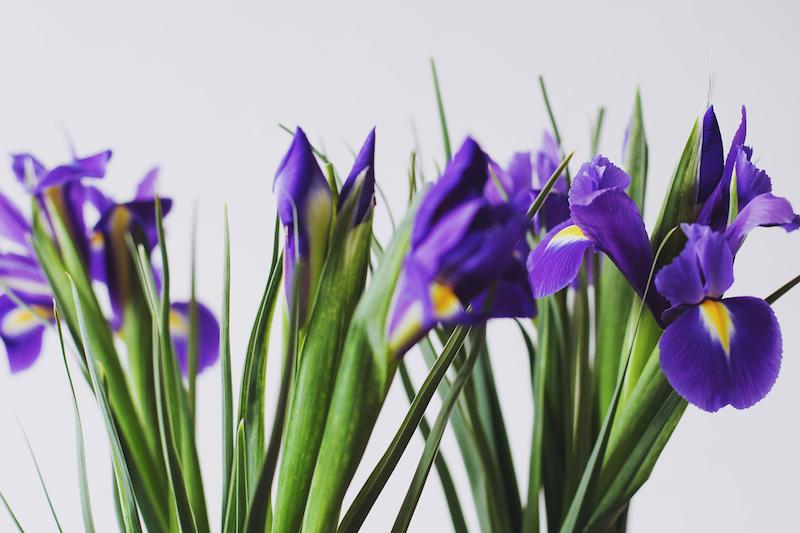 DIY-vases-argentes printaniers-moodfeather-4