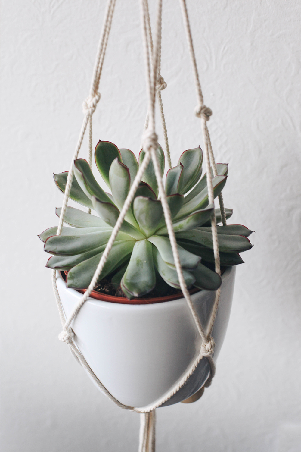Suspension macramé plante